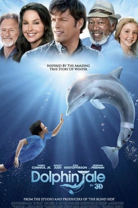 17 Best images about Winter and Hope on Pinterest ...  |Dolphin Tale 2 Sawyer And Hazel Kiss